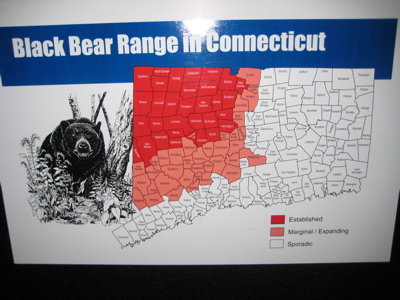 bear-range.jpg