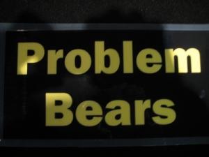 problem-bears.jpg