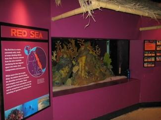 100 Maritime Aquarium At Norwalk